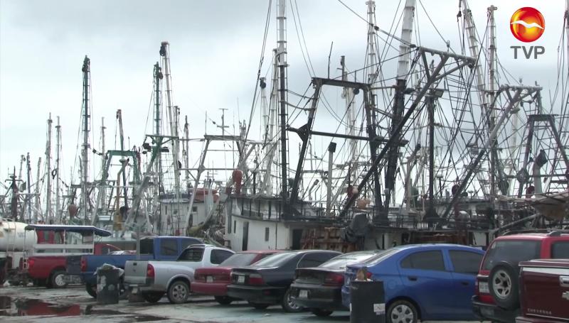 50% de la flota camaronera se quedará amarrada en puerto