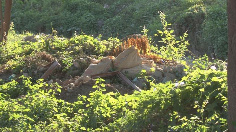 Enmotado y con basura arroyo en La Progreso