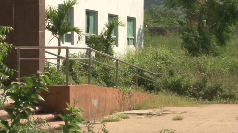 Rodea maleza oficinas de SEPyC en Mazatlán