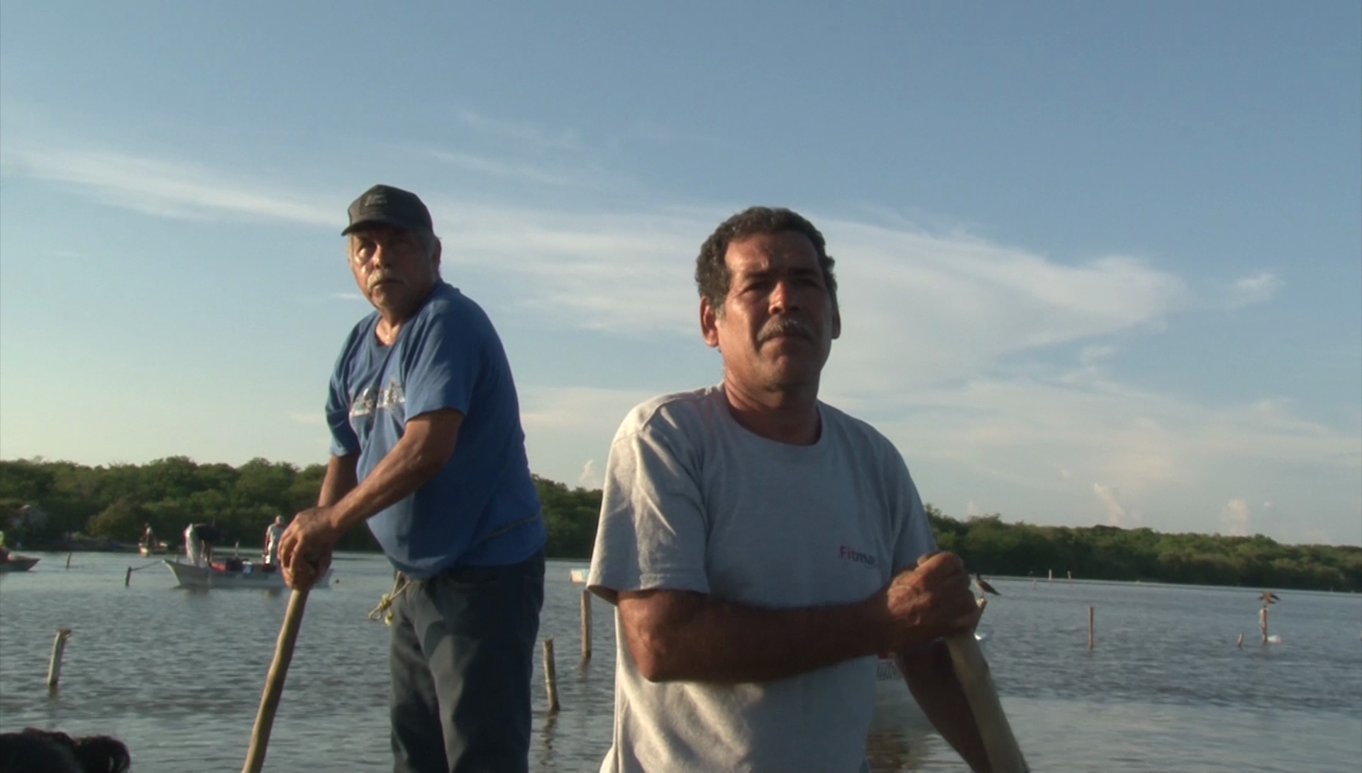 Historical fishing crisis in Huizache-Caimanero